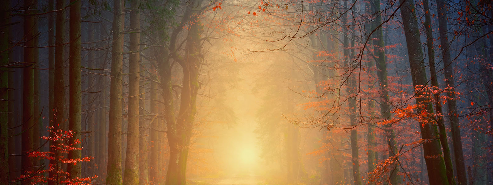 The Subtle Traps Of Spiritual Pride